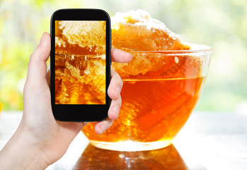 tourist photographs of fresh honey in comb