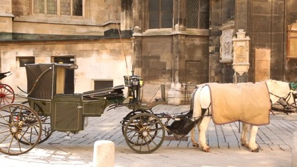 Old house has an empty carriage with pair of horses