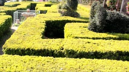 English green labyrinth