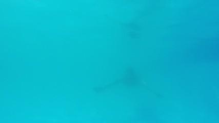 Muscular man swimming  underwater