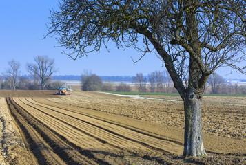 Landwirtschaft Frühling