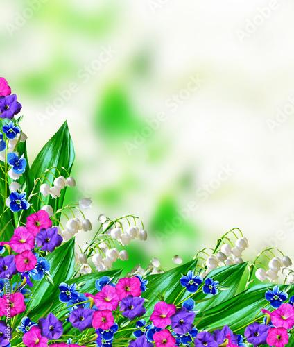 Foto op Plexiglas Lelietje van dalen floral background