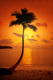 Sunset over the beautiful tropical beach