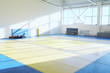 Hall of martial arts - ring - 80165304