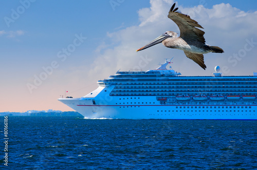 Cruise ship closeup with pelican in foreground - 80166186