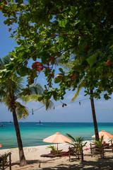 Sun umbrellas and beach chairs on tropical beach