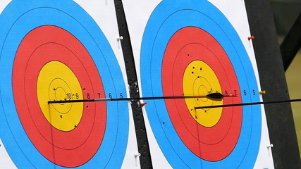Bow Arrows hitting on target of precisely. HD