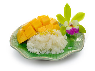 sticky rice with mango on ceramic plate