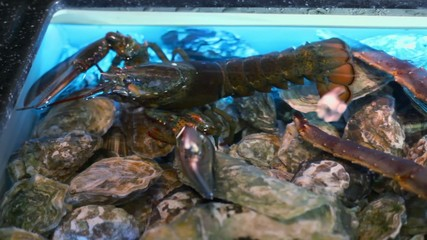 Crayfish sits in wavy water of aquarium with crab claws