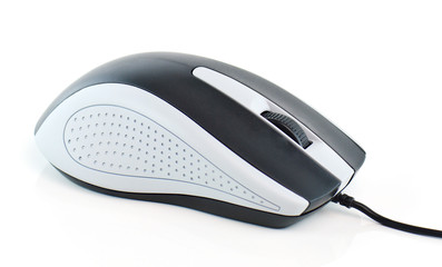computer mouse on white background