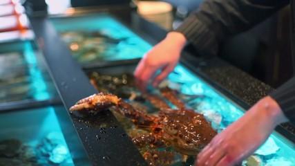 Restaurateur holds living crab and puts them in aquarium