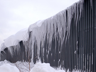 Long icicles on a building wall