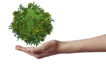 Hand holding green planet with tropical trees isolated on white