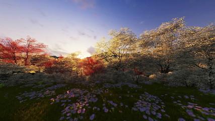 Spring forest, mountain and lake, sunrise, camera tilt