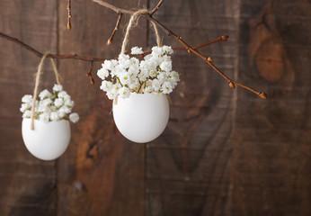 White baby's breath flowers (gypsophila) in eggs shell.