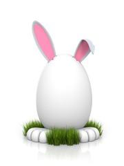 Rabbit in the egg