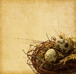Two Quail eggs in nest.     Easter Decor.  Added Paper texture.