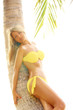 Young beauty woman with palm tree isolate white background