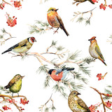 Fototapety seamless texture of forest birds. watercolor painting