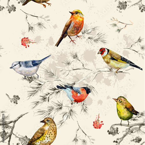 Vintage seamless texture of little birds watercolor for 3 little birds salon