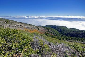 La Palma Caldera de Taburiente sea of clouds in canary Islands