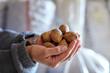 Woman holding walnuts