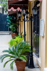 Lamps and Potted Plants on Sidewalk