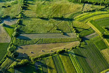 Fields view from above