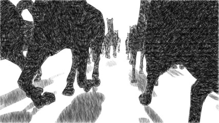 Graphic horses running front view, loopable