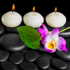 spa background of row white candles, orchid flower dendrobium an