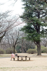 Japanese man resting on a bench in a park