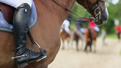 Horseman leg in boot at stirrup on chestnut horse, closeup