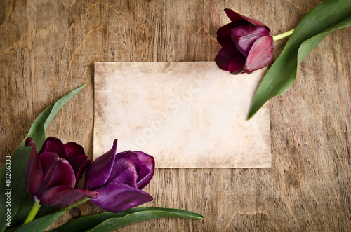 Plexiglas Lilac The old card and fresh tulips from two corners is lying on woode