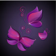 set of vector shiny butterflies, icons