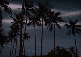Sternenbahnen