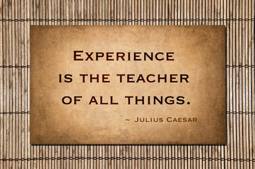 Experience is the teacher of all things. ~ Julius Caesar