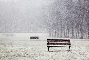 Snowing in the park bench