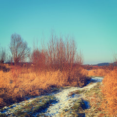dry grass field, vintage color tone