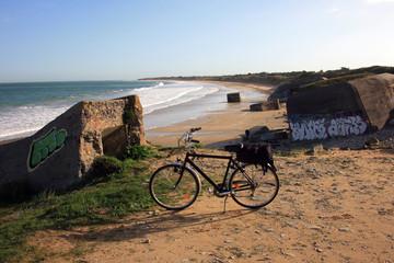Francia,Isola del Re, la spiaggia.