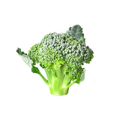 Broccoli isolated with white on backgound