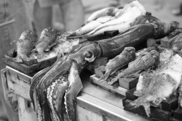 Fish for sale in the city of sicily