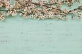Fiori di primavera poster