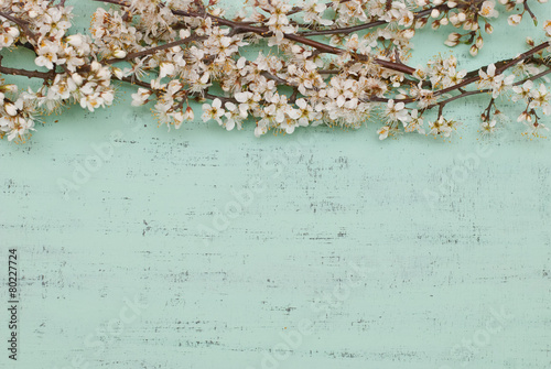 Fiori di primavera - 80227724