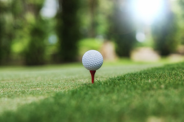 Golf and ball ready for tee off