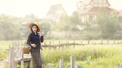 Working woman in countryside,Thailand