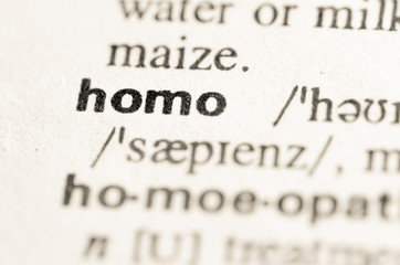 Dictionary definition of word homo