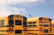 Row of American school busses, USA - 80234710