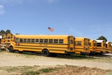 Row of American school busses, USA