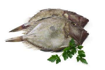 seabass with parsley