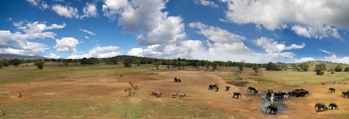 Safari fotografico in africa